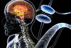 Parkinson's Disease Treatment in Noida